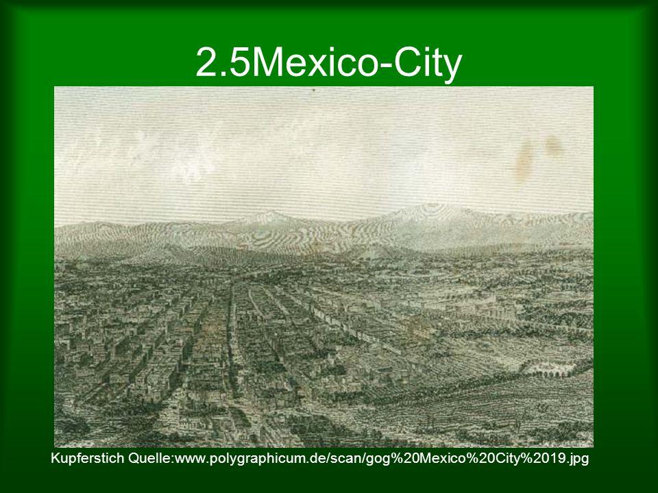 2.5Mexico-City Kupferstich Quelle:www.polygraphicum.de/scan/gog%20Mexico%20City%2019.jpg