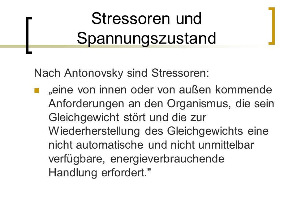 Stressoren und Spannungszustand