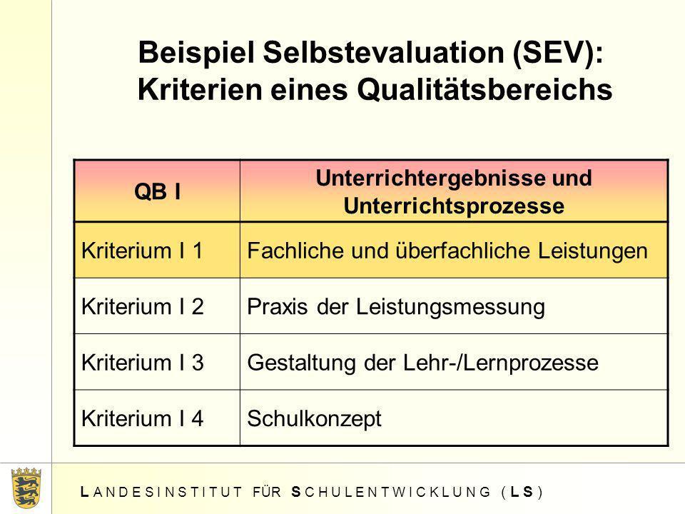Beispiel Selbstevaluation (SEV): Kriterien eines Qualitätsbereichs