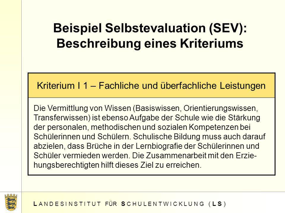 Beispiel Selbstevaluation (SEV): Beschreibung eines Kriteriums