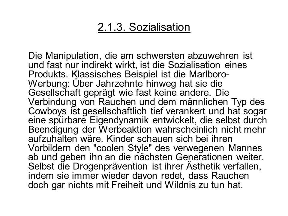 2.1.3. Sozialisation
