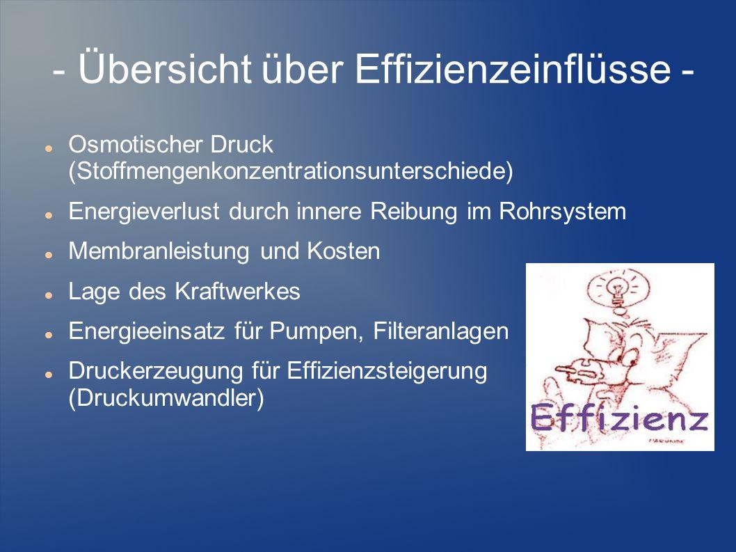 - Übersicht über Effizienzeinflüsse -