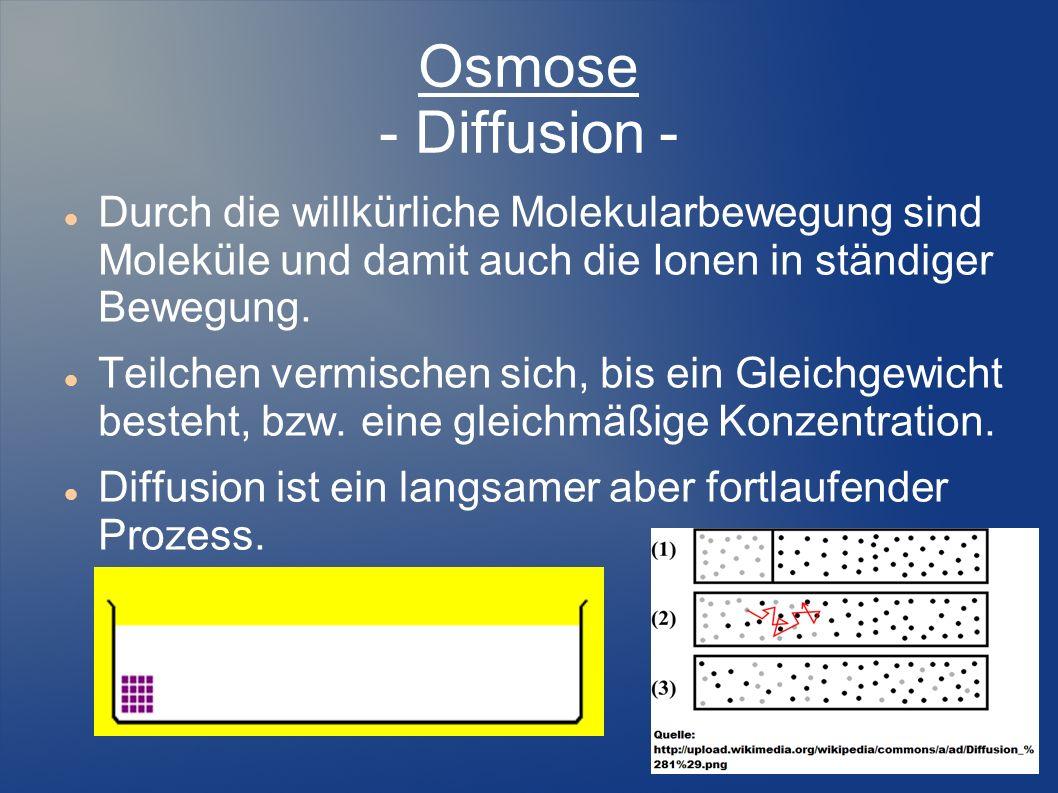 Osmose - Diffusion -Durch die willkürliche Molekularbewegung sind Moleküle und damit auch die Ionen in ständiger Bewegung.