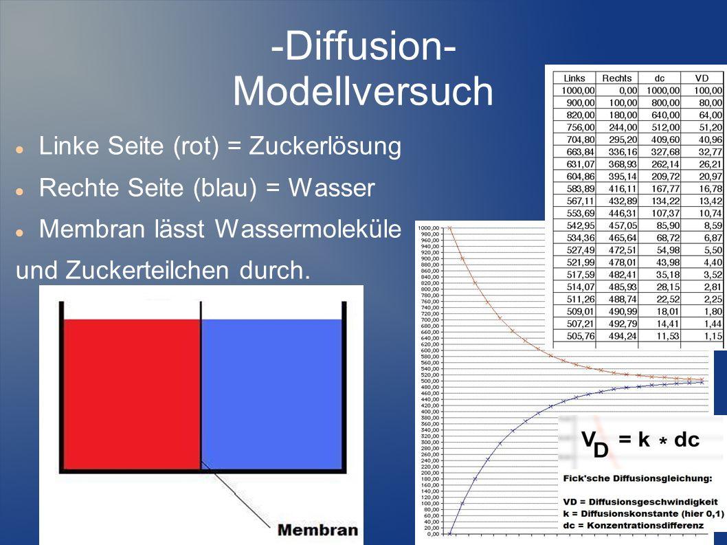 -Diffusion- Modellversuch