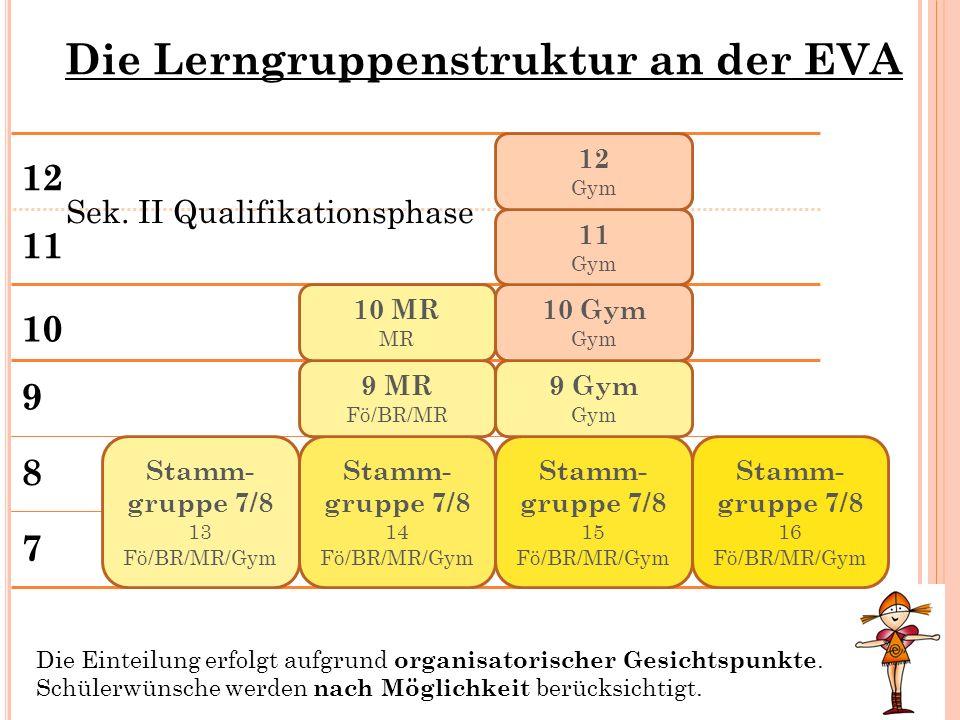 Die Lerngruppenstruktur an der EVA