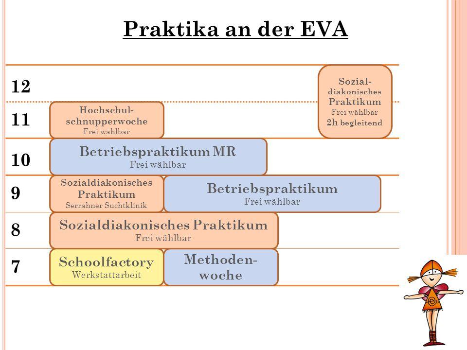 Praktika an der EVA 12 11 10 9 8 7 Betriebspraktikum MR