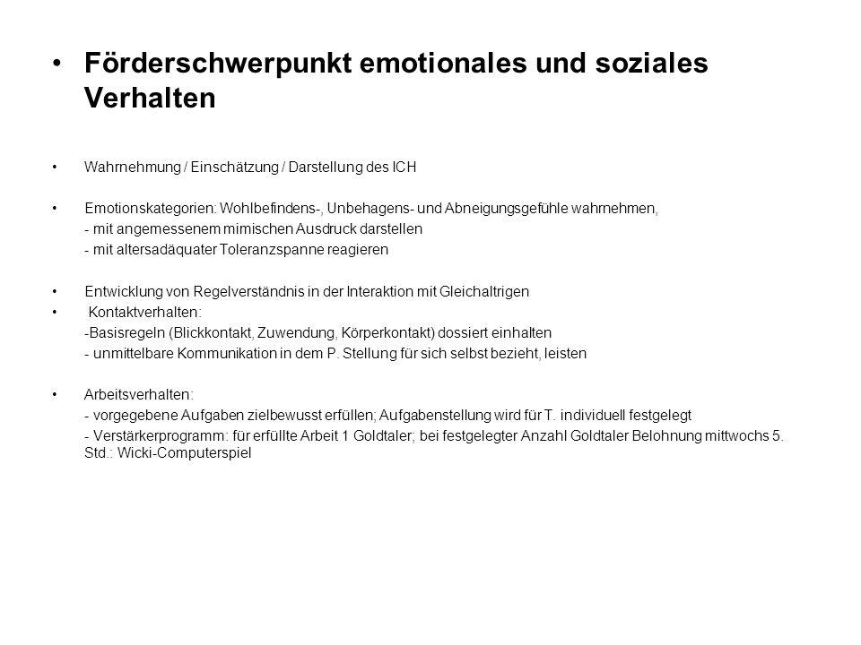 Förderschwerpunkt emotionales und soziales Verhalten