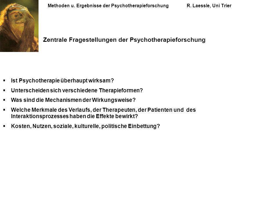 Zentrale Fragestellungen der Psychotherapieforschung