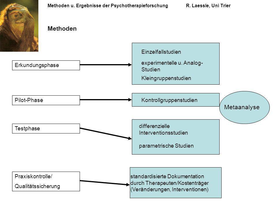 Methoden Metaanalyse Einzelfallstudien