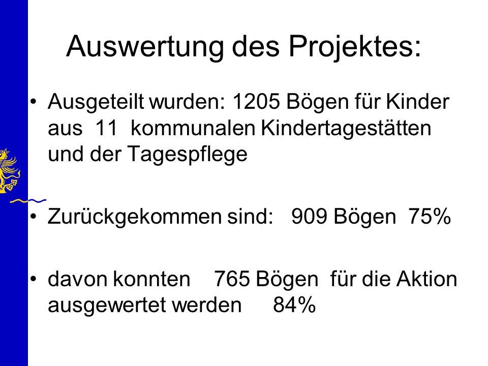 Auswertung des Projektes: