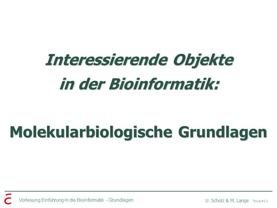 Interessierende Objekte in der Bioinformatik: Molekularbiologische Grundlagen