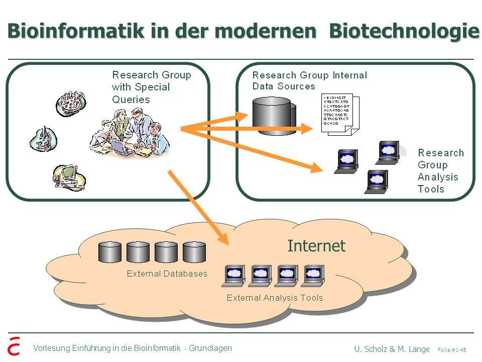 Bioinformatik in der modernen Biotechnologie