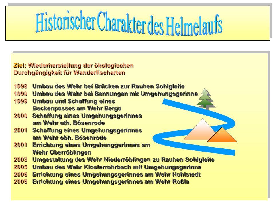 Historischer Charakter des Helmelaufs
