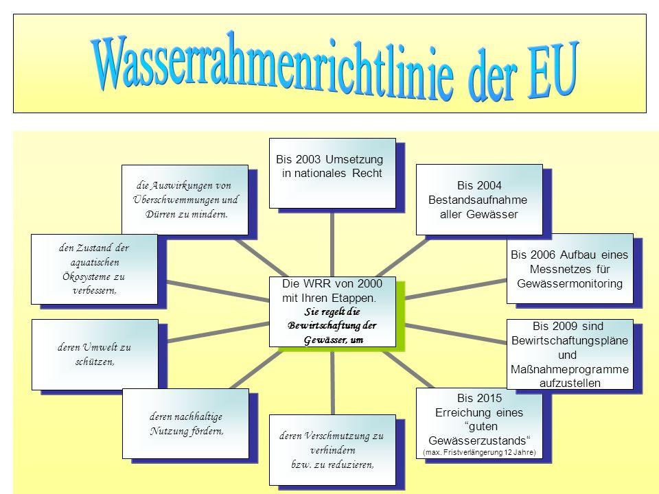 Wasserrahmenrichtlinie der EU