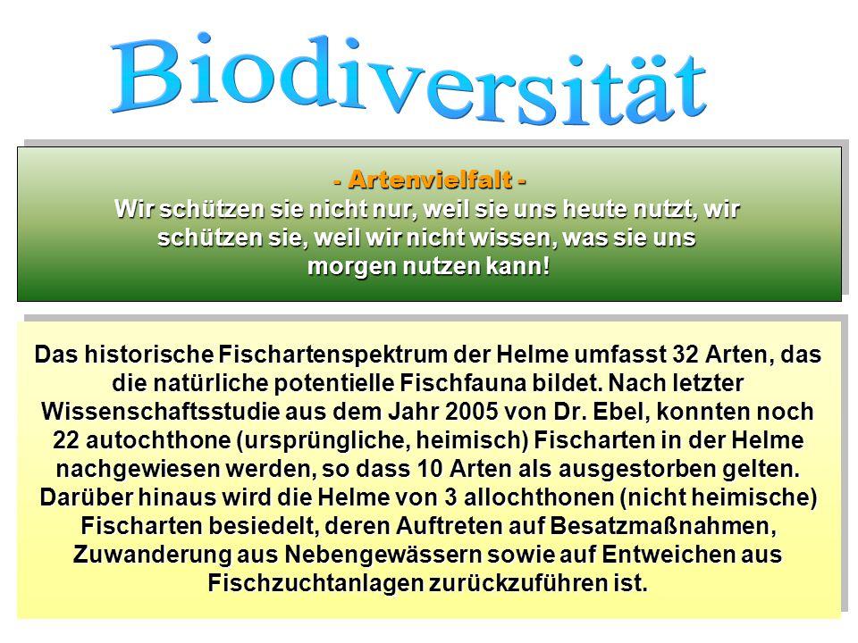 Biodiversität - Artenvielfalt - Wir schützen sie nicht nur, weil sie uns heute nutzt, wir. schützen sie, weil wir nicht wissen, was sie uns.