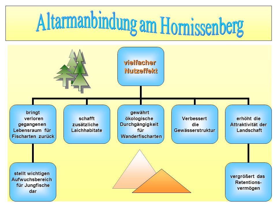 Altarmanbindung am Hornissenberg