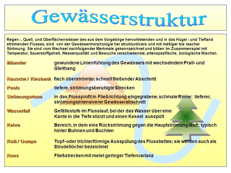 GewässerstrukturRegen -, Quell, und Oberflächenwässer des aus dem Vorgebirge hervortretenden und in das Hügel - und Tiefland.