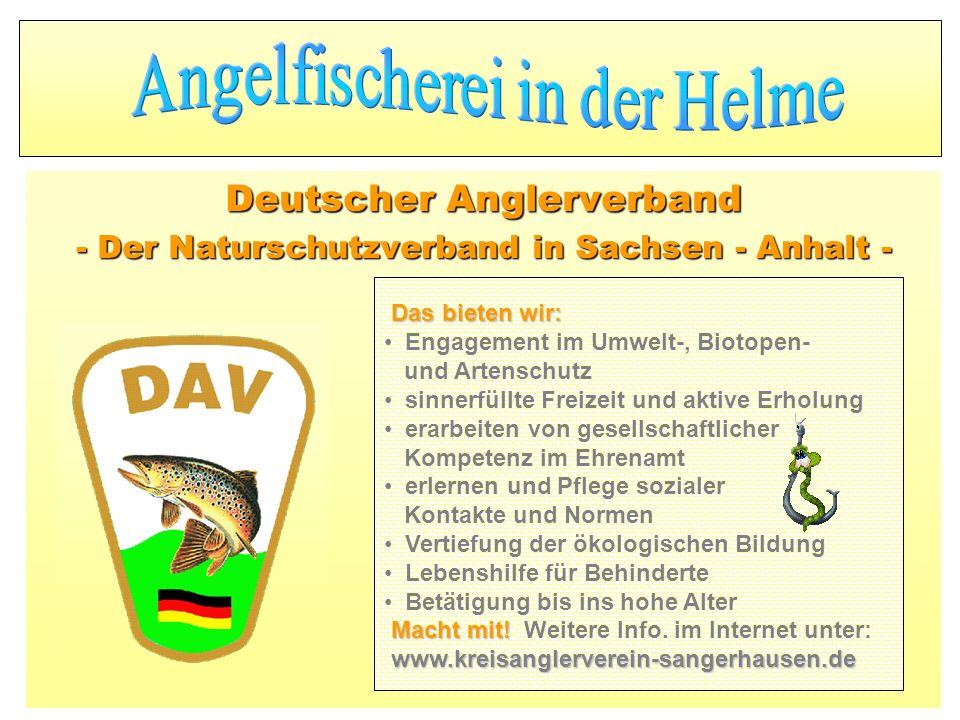 Deutscher Anglerverband - Der Naturschutzverband in Sachsen - Anhalt -