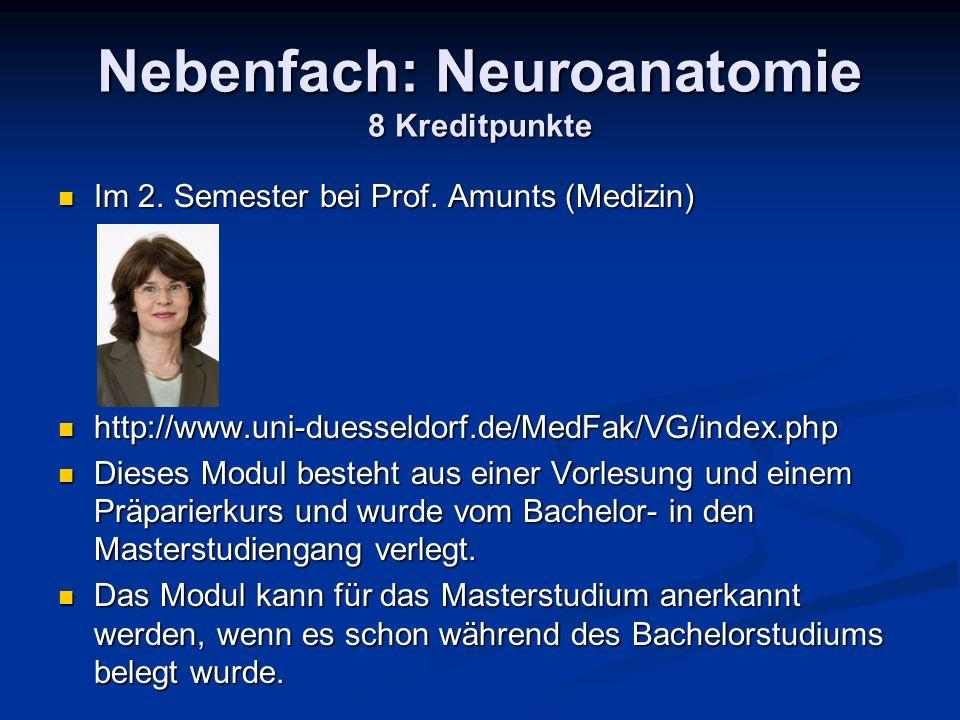 Nebenfach: Neuroanatomie 8 Kreditpunkte