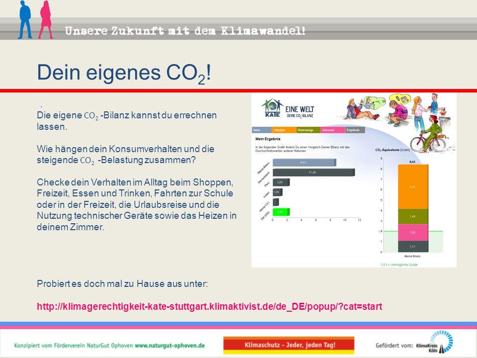 Dein eigenes CO2! . Die eigene CO2 -Bilanz kannst du errechnen lassen.