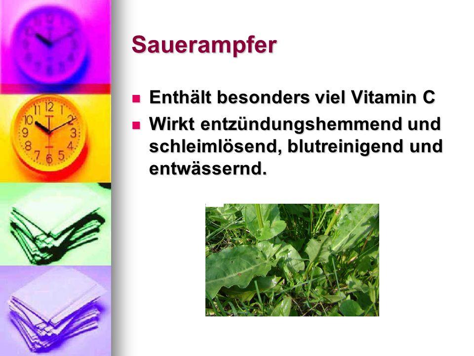 Sauerampfer Enthält besonders viel Vitamin C