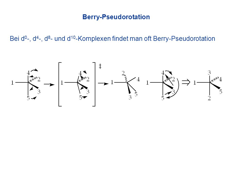 Berry-Pseudorotation