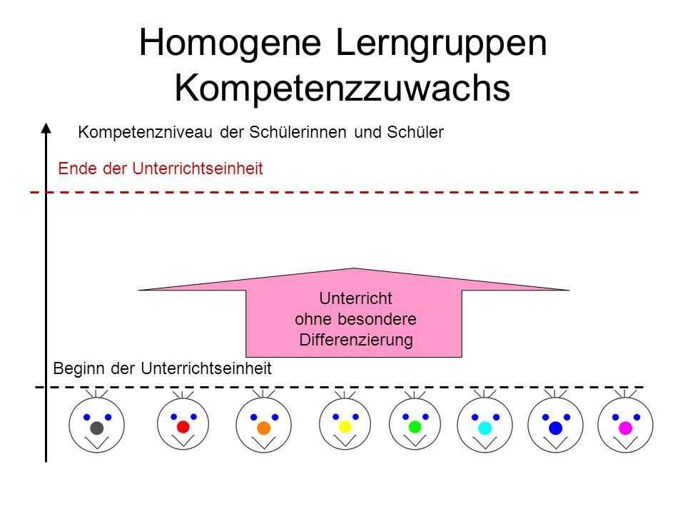Homogene Lerngruppen Kompetenzzuwachs