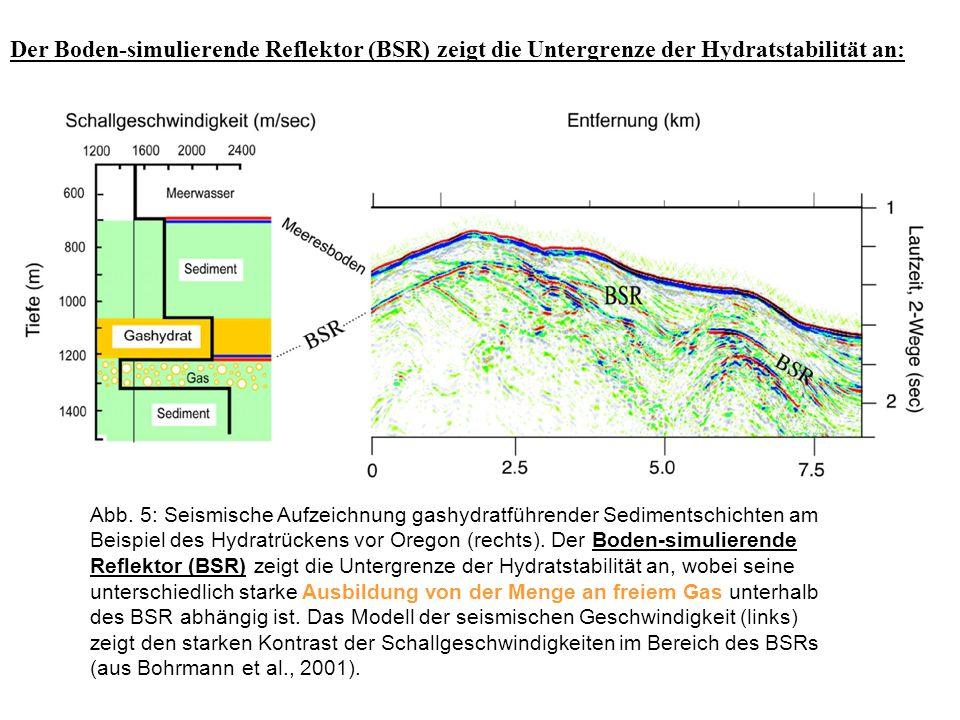 Der Boden-simulierende Reflektor (BSR) zeigt die Untergrenze der Hydratstabilität an: