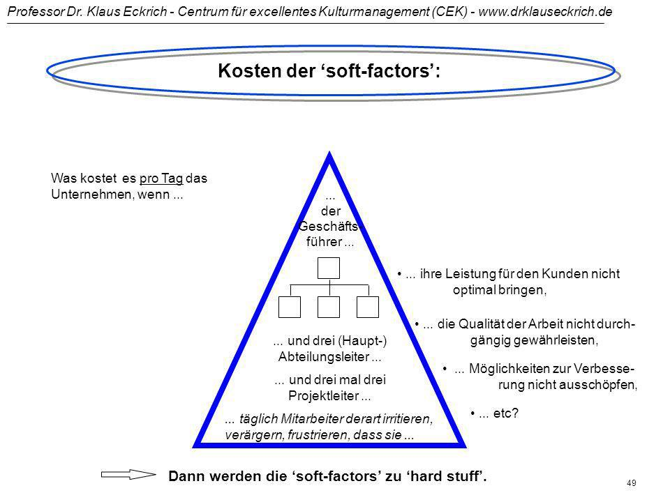 Kosten der 'soft-factors':