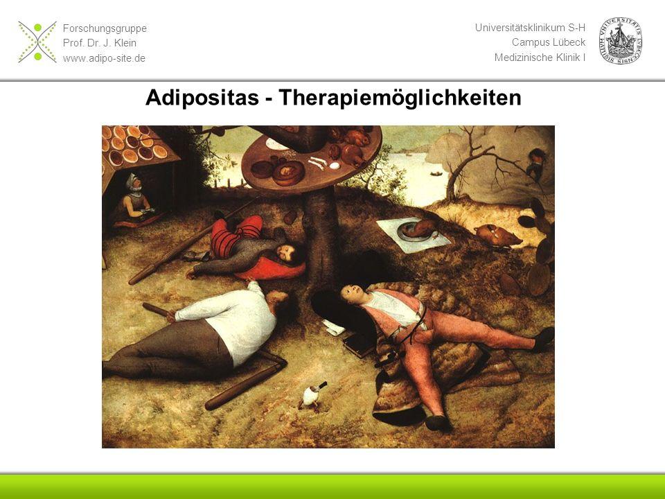 Adipositas - Therapiemöglichkeiten