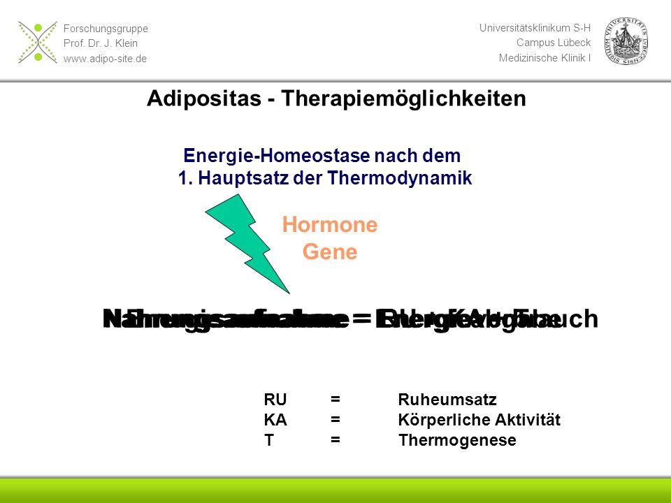 Energieaufnahme = Energieabgabe