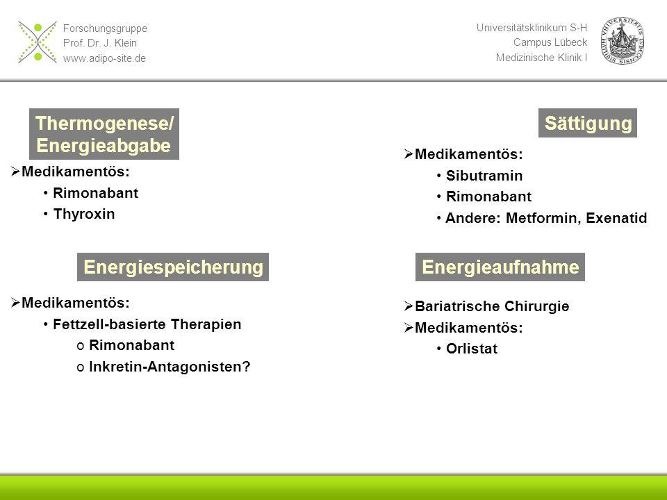Thermogenese/ Energieabgabe Sättigung Energiespeicherung