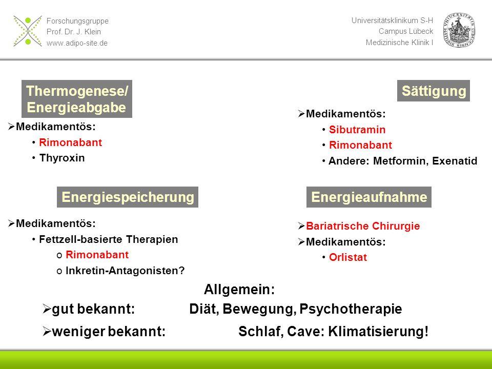 gut bekannt: Diät, Bewegung, Psychotherapie