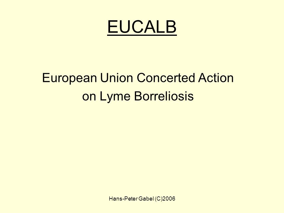 European Union Concerted Action
