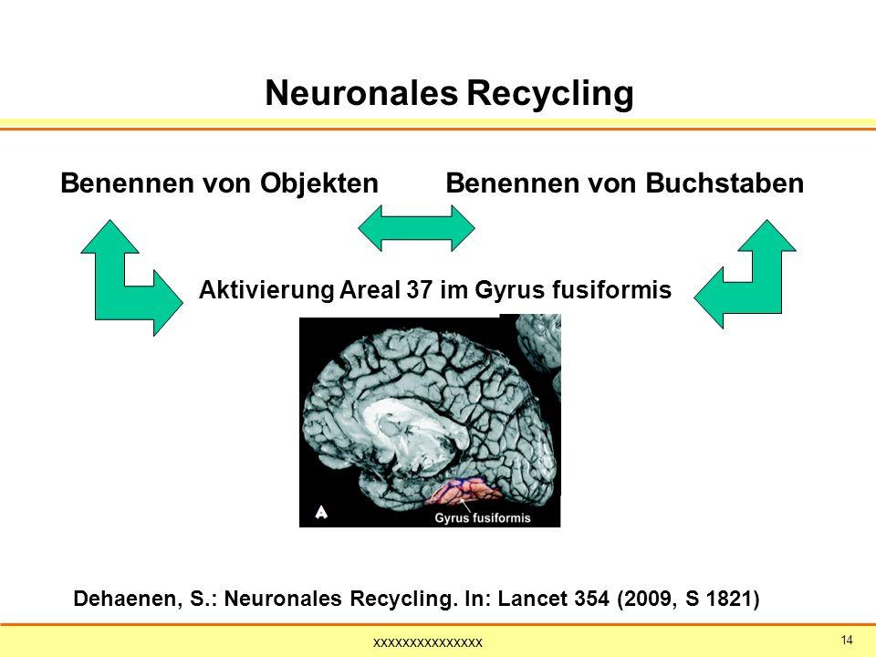 Neuronales Recycling Benennen von Objekten Benennen von Buchstaben