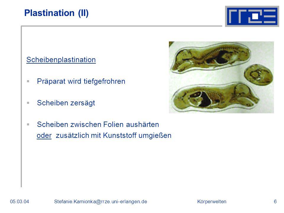 Plastination (II) Scheibenplastination Präparat wird tiefgefrohren