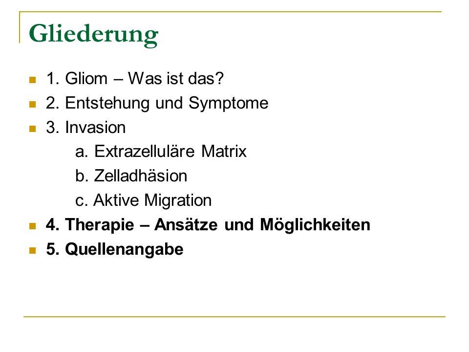 Gliederung 1. Gliom – Was ist das 2. Entstehung und Symptome