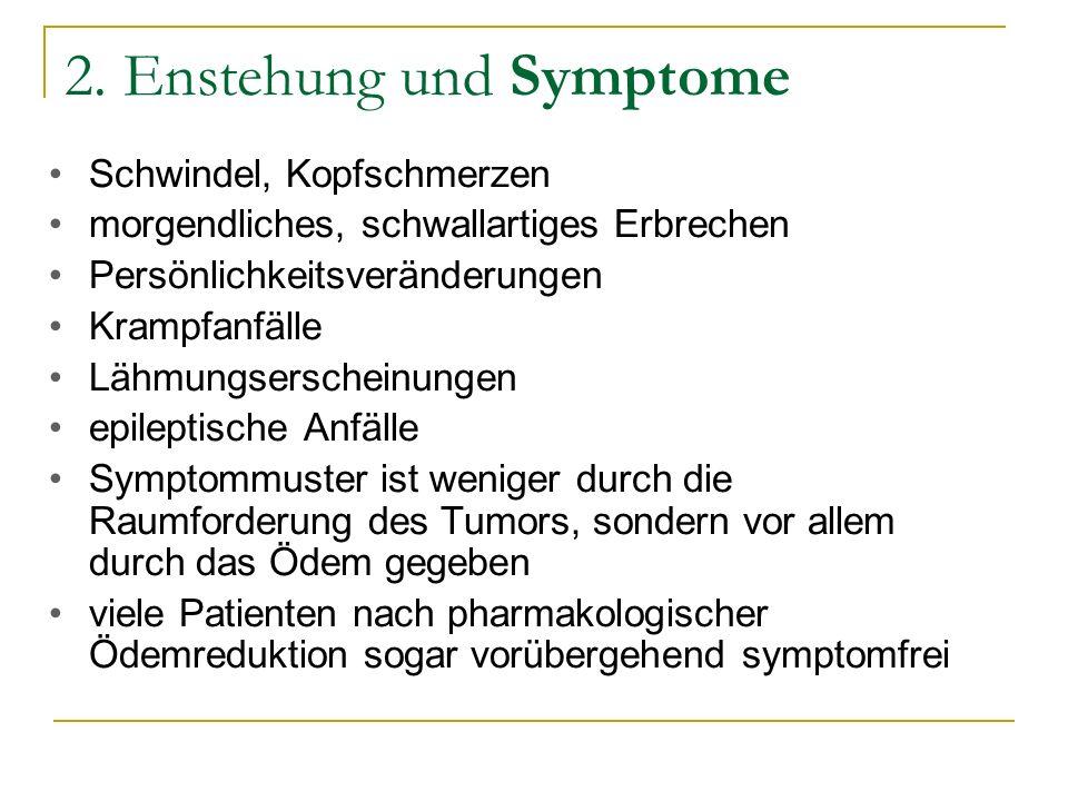 2. Enstehung und Symptome