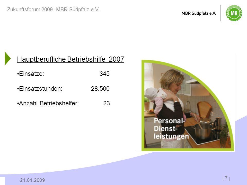 Hauptberufliche Betriebshilfe 2007