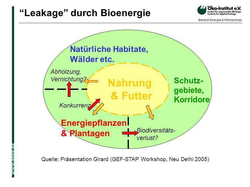 Leakage durch Bioenergie