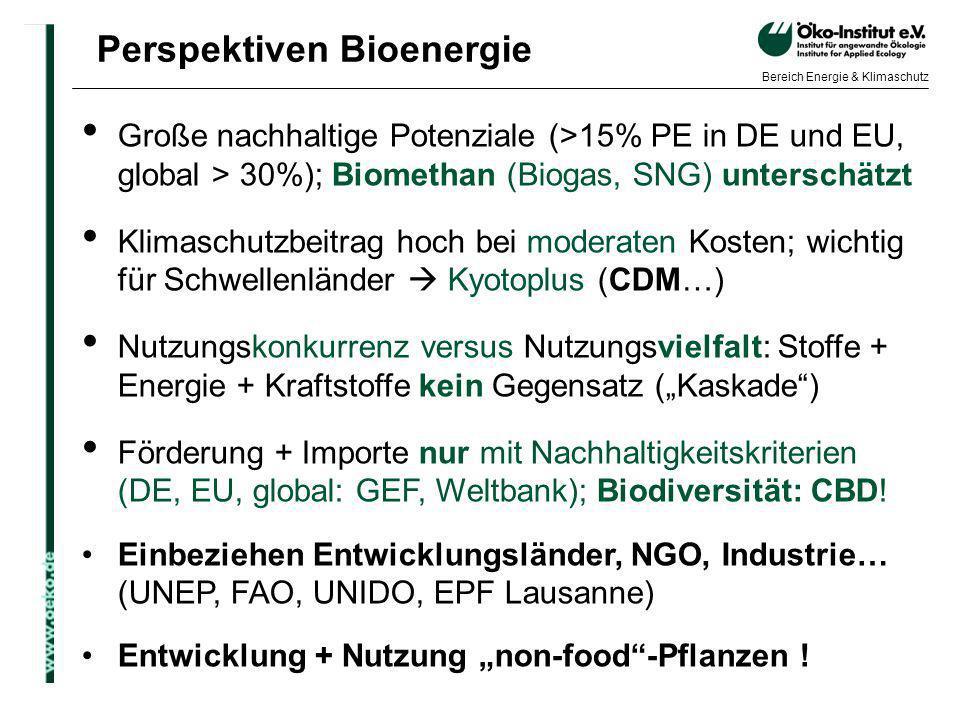 Perspektiven Bioenergie