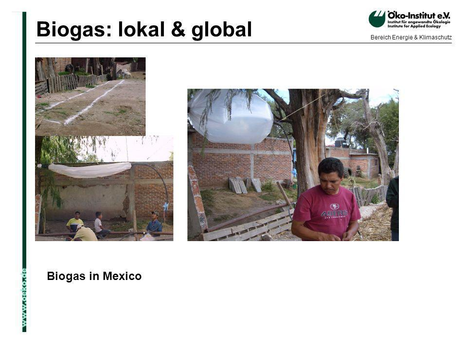Biogas: lokal & global Biogas in Mexico