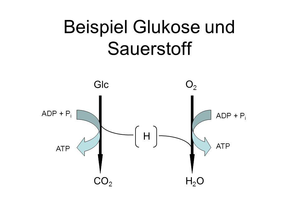 Beispiel Glukose und Sauerstoff