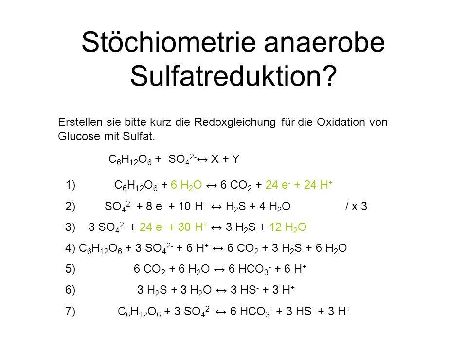Stöchiometrie anaerobe Sulfatreduktion
