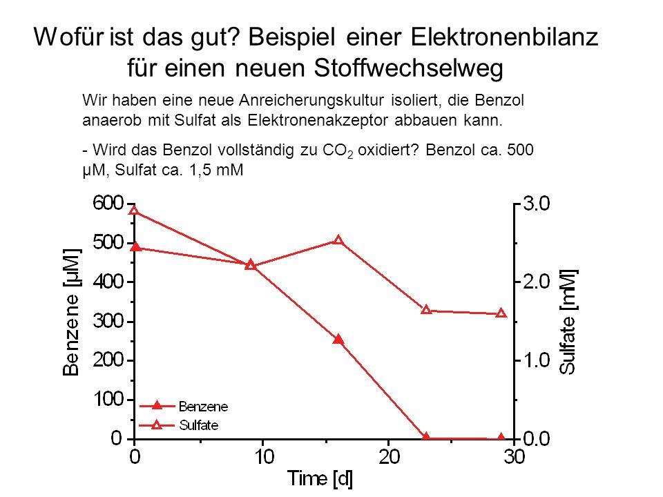 Wofür ist das gut Beispiel einer Elektronenbilanz für einen neuen Stoffwechselweg