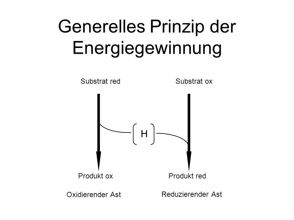 Generelles Prinzip der Energiegewinnung