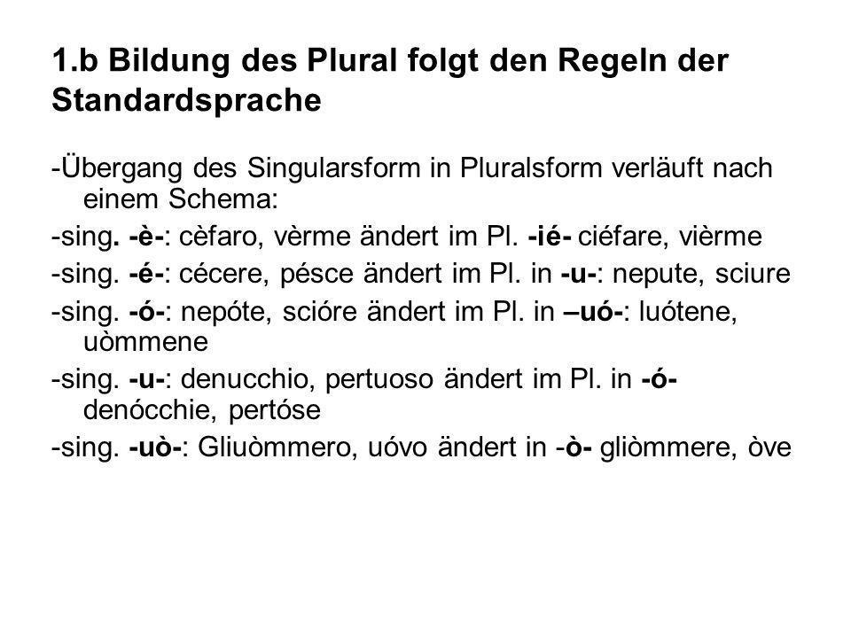 1.b Bildung des Plural folgt den Regeln der Standardsprache