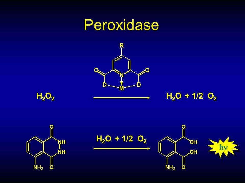 Peroxidase H2O2. H2O + 1/2 O2. Allgemein: Eine Peroxydase zersetzt Wasserstoffperoxyd zu Wasser und O2.