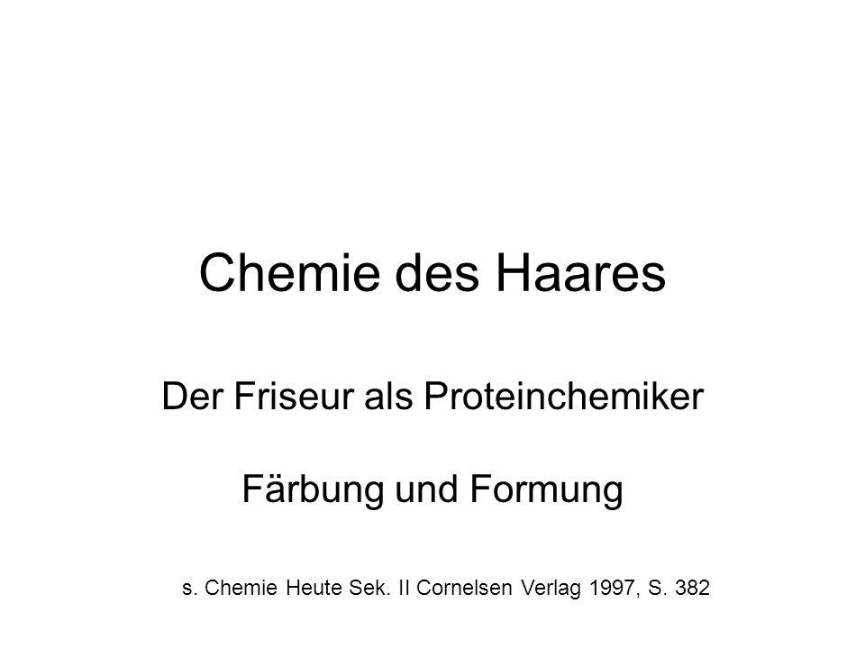 Der Friseur als Proteinchemiker Färbung und Formung