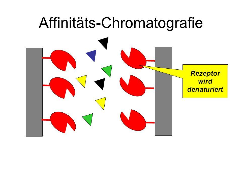 Affinitäts-Chromatografie